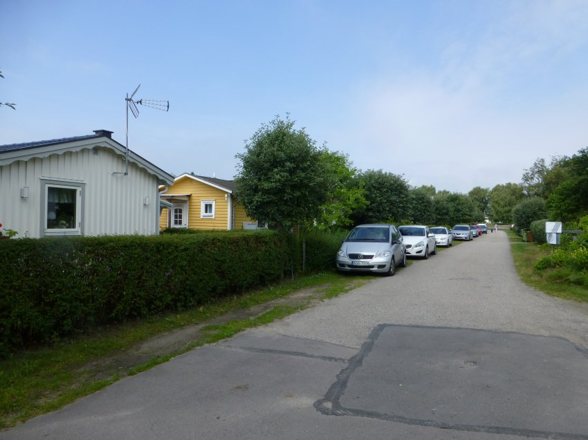 P1010613